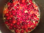 cranberrysauce (3)